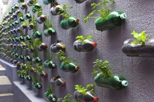 vertical-garden-bottl...